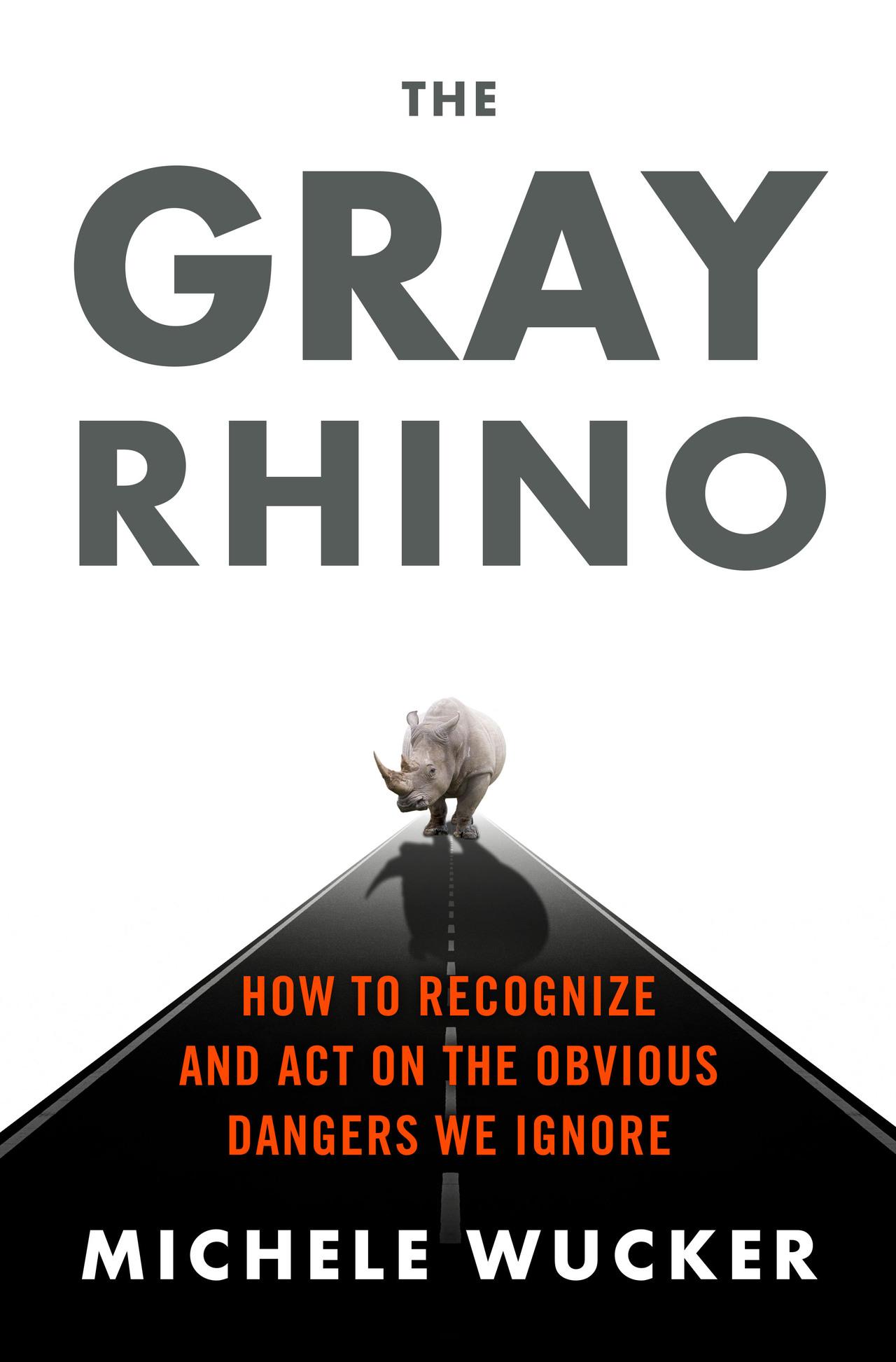 Grayrhino final 02