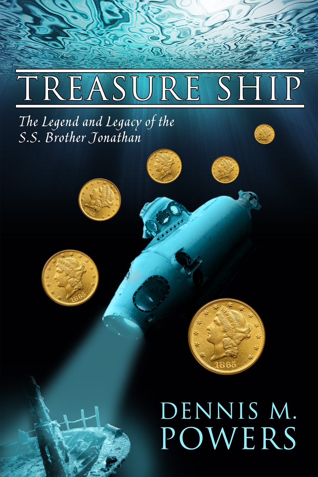 Treasureship ebookcover
