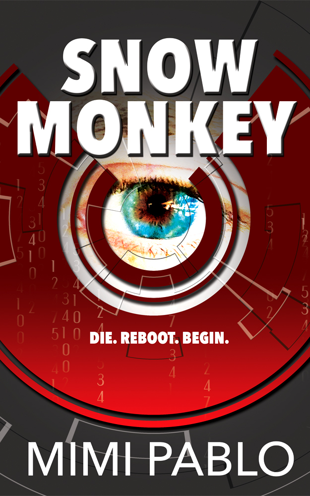 Snow monkey ebook cover