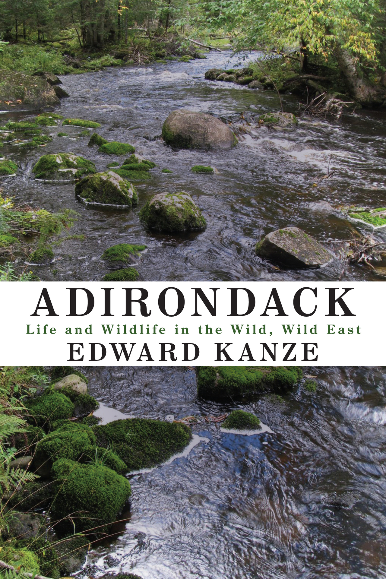 Kanze adirondack cover