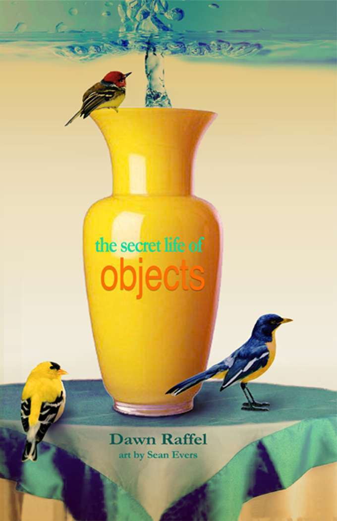 Objects cover raffel 680
