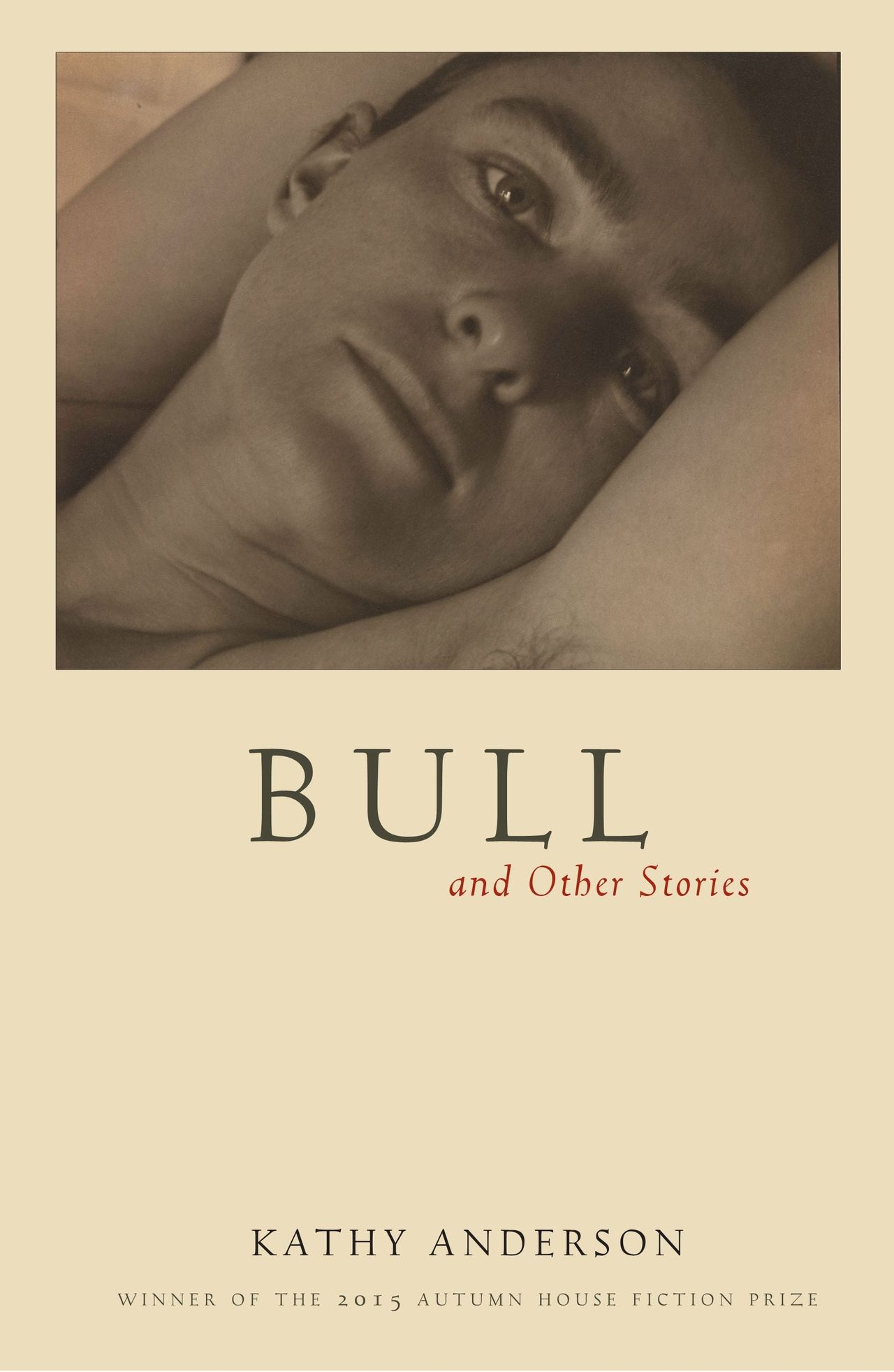 Bull and other stories    anderson