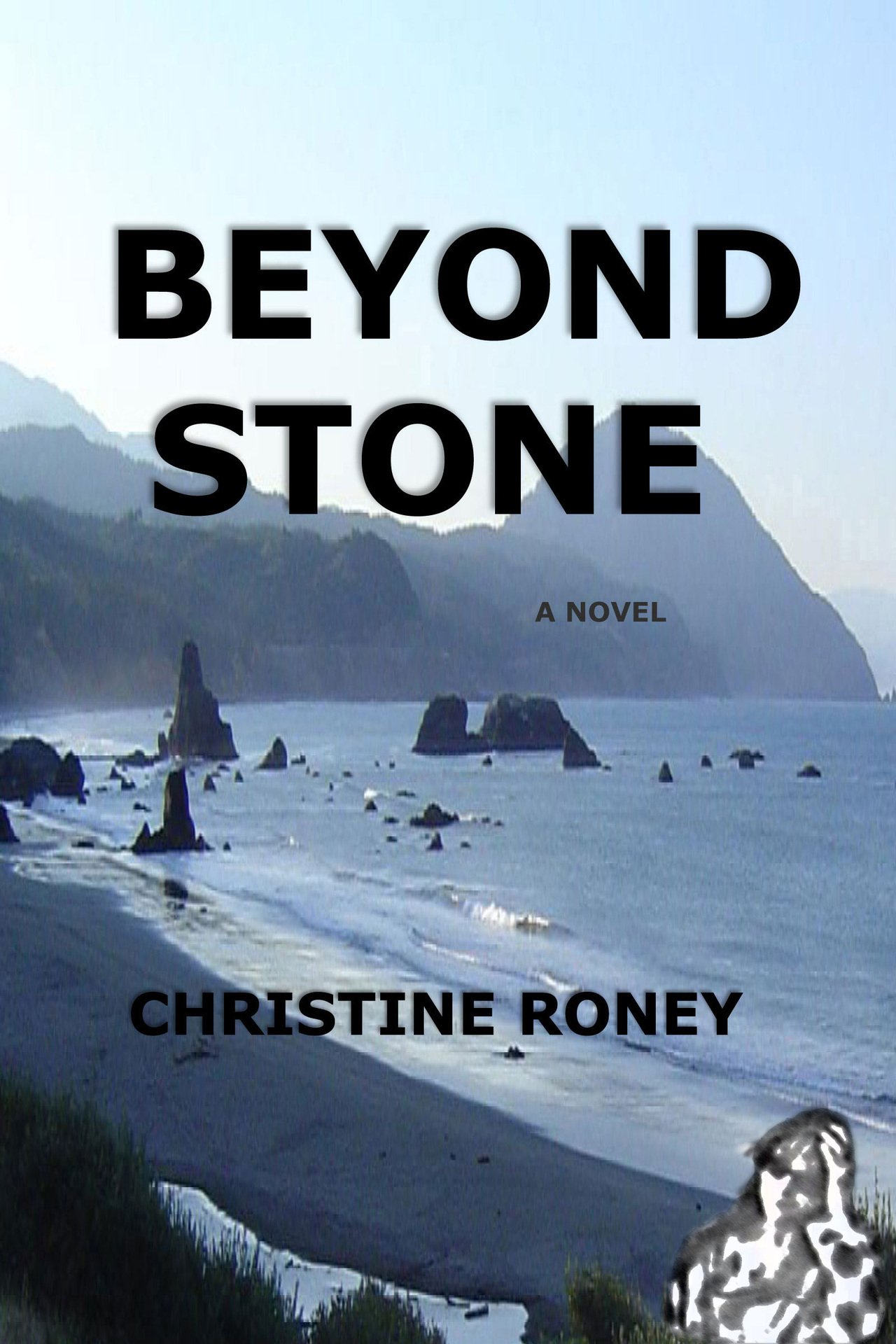 Beyond stone kindle cover