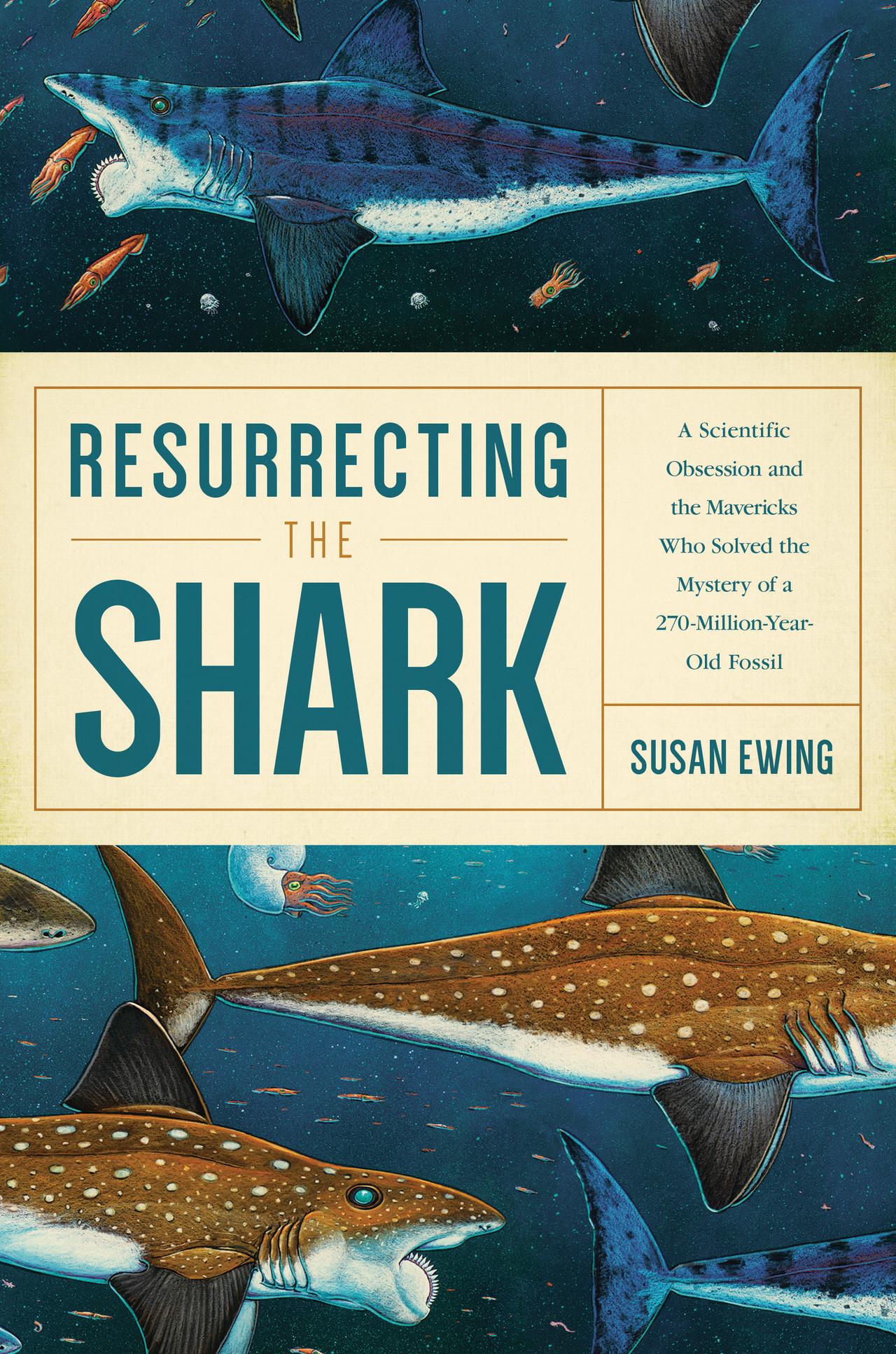 Resurrecting the shark ad copy