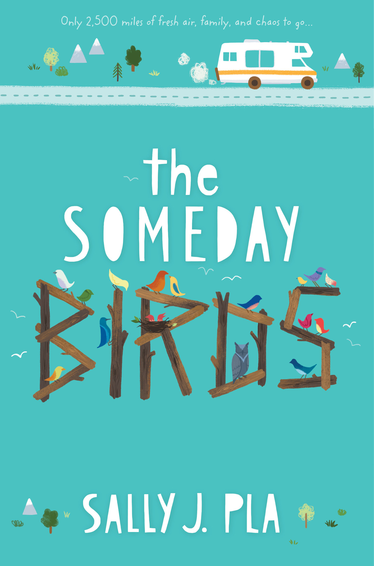 Somedaybirds web cover