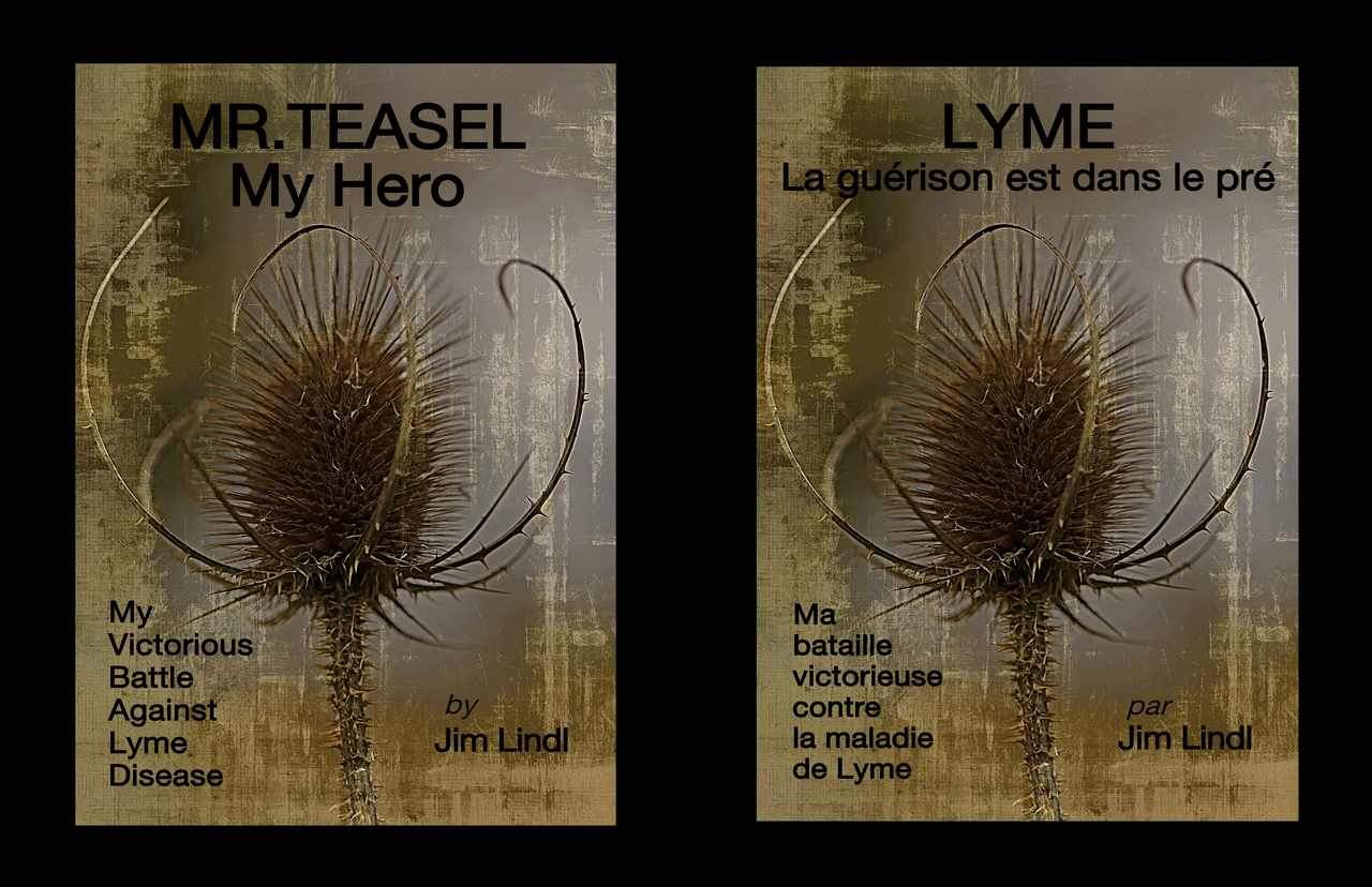 Mtmh   lyme    authors guild featured work