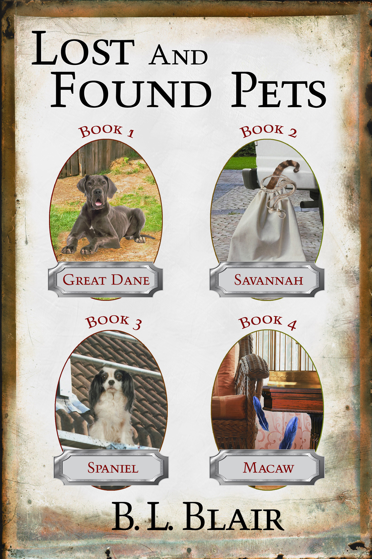 Lost and found pets box set front