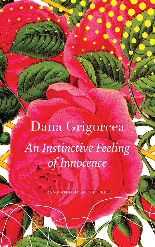 Grigorcea instinctive feeling sm