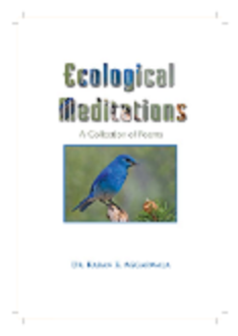 Ecological meditations book cover image 2011