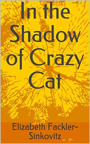 In the shadow of crazy cat kindle cover
