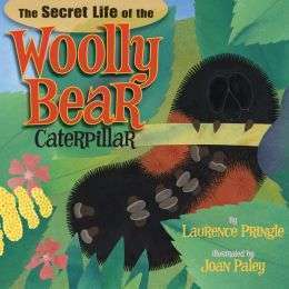 "<font color=""blue""><b>The Secret Life of the Woolly Bear Caterpillar</b></font>"