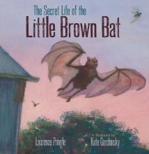 "<font color=""blue""><b>The Secret Life of the Little Brown Bat</b></font>"