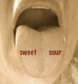 "A Tongue labeled ""Sweet"" and ""Sour"""